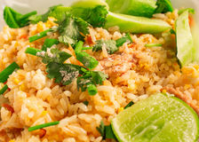 Close-up do arroz fritado delicioso. arroz de /Fried Imagens de Stock Royalty Free