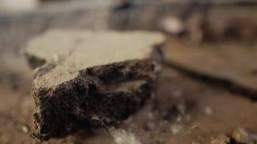 Close-up do assoalho na construção arruinada velha Teias de aranha e sujeira video estoque