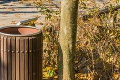Close up do balde do lixo de madeira Imagem de Stock Royalty Free