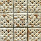 Close up do biscoito do Saltine Imagens de Stock