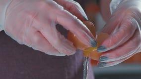Close-up do branco da separação do ovo da gema vídeos de arquivo