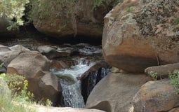 Close up do c?rrego da montanha Rio da montanha rochosa imagem de stock royalty free