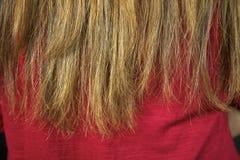 Close up do cabelo arruinado das extremidades rachadas pronto para ser cortado Imagem de Stock Royalty Free