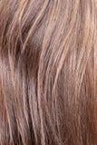 Close up do cabelo da castanha Fotos de Stock Royalty Free