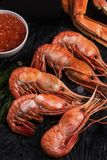 Close up do camarão botan do leste imagem de stock