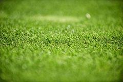 Close up do campo de golfe imagem de stock royalty free