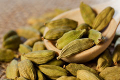 Close up do cardamomo Imagens de Stock Royalty Free