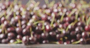 Close-up do cerejas suculentas maduras vermelhas molhadas em uma bandeja de aço Foco em mudança do fundo das bagas Gotas da água  filme