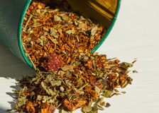 Close up do chá dos rooibos Foto de Stock Royalty Free