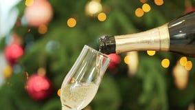 Close-up do champanhe que derrama nos vidros, árvore de Natal no fundo Close-up do champanhe de derramamento ao vidro video estoque