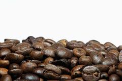 Close up do feijão de café Fotos de Stock Royalty Free