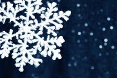 Close-up do floco de neve fotografia de stock