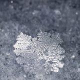 Close-up do floco de neve real imagem de stock