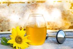 Close up do frasco do mel e de um girassol fotos de stock