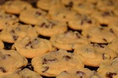 Close up do fundo caseiro das cookies dos pedaços de chocolate Foto de Stock Royalty Free