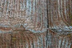 Close up do fundo de madeira velho da textura das pranchas imagens de stock