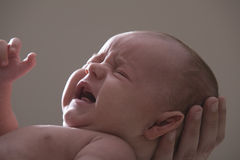 Close up do grito do bebê Fotografia de Stock