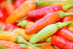 Close up do grupo fresco colorido das pimentas Imagem de Stock Royalty Free