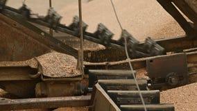 Close up do mecanismo da máquina do transporte da grão do trigo sob o céu aberto Produção do pão e extração do trigo vídeos de arquivo
