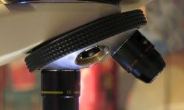 Close up do microscópio Imagem de Stock Royalty Free