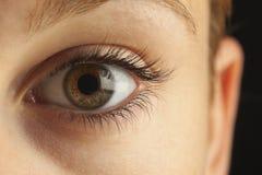 Close-up do olho Foto de Stock