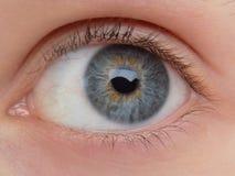 Close-up do olho de bonito imagem de stock