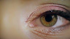 Close-up do olho fêmea video estoque