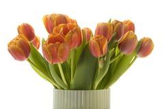 Close up do ramalhete das tulipas Foto de Stock Royalty Free