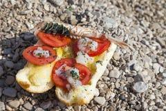 Close up do sanduíche fresco dos lagostim-camarões imagem de stock