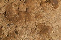 Close up do solo rachado seco foto de stock