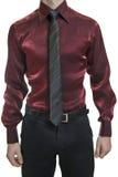 Close up do torso do homem de negócio desconhecido seguro Fotografia de Stock Royalty Free