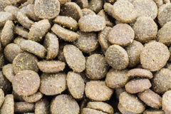 Close-up Dog food Stock Photos