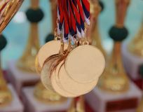 The close up of dog golden medals with trophies in the background.