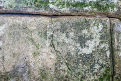 Close-up of dolmen in the forest Royalty Free Stock Photography