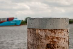 Close-up of dolphin and container vessel in blurry background at royalty free stock images