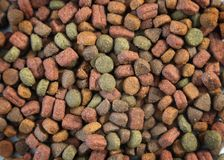 Close up of domestic dry animal food for cats or dogs. Pile of crunchy snacks for pets royalty free stock photography