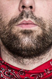 Close up dos bordos e da barba do homem Fotografia de Stock Royalty Free