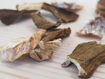 Close-up dos cogumelos secados Fotos de Stock Royalty Free