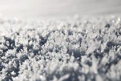 Close-up dos cristais da neve imagens de stock royalty free