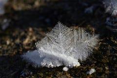 close up dos cristais de gelo Imagem de Stock