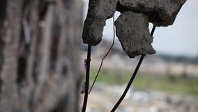 Close-up dos encaixes concretos reforçados destruídos durante a luta vídeos de arquivo