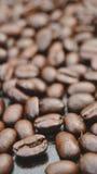 Close up dos feijões de café Imagens de Stock Royalty Free