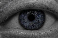 Close-up dos olhos azuis Fotos de Stock