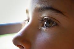 Close-up dos olhos bonitos do marrom da menina Imagens de Stock
