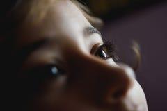 Close-up dos olhos bonitos do marrom da menina Imagens de Stock Royalty Free