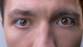 Close up dos olhos marrons masculinos caucasianos que olham em linha reta na câmera com expressão facial neutra vídeos de arquivo