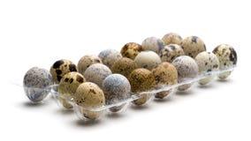 Close-up dos ovos de codorniz imagens de stock