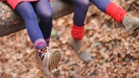 Close-up dos pés fêmeas de duas meninas em peúgas brilhantes e de botas na perspectiva da folha amarela caída E vídeos de arquivo