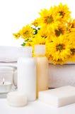 Close-up dos produtos para o cuidado dos termas e do corpo Imagens de Stock