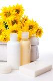 Close-up dos produtos para o cuidado dos termas e do corpo Imagens de Stock Royalty Free